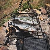 Au menu aujourd'hui daurades! Un bon dimanche entre amis...merci à tous de vos visites durant ce beau week-end! #metz #metzville #randonnée #camping #bivouac #outdoor #cooking #feu #vanlife #cocooning #bushcraft #bushcrafting #trip #travel #van #barbecue #trekking #marmite #petromax #promenonsnous #promenonsnous_shop #barbecue #barbecuetime #bbq #bbqlovers #bbqtime #outtrip #randonnée #foret #nature #bushcraftkids