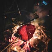 #metz #metzville #randonnée #camping #bivouac #outdoor #cooking #conceptstore #feu #vanlife #cocooning #bushcraft #bushcrafting #trip #travel #van #barbecue #trekking  #petromax #promenonsnous #promenonsnous_shop #barbecue #barbecuetime #bbq #bbqlovers #bbqtime #outtrip #randonnée #foret #nature #iamadragon
