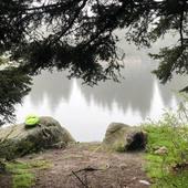 Aujourd'hui après un début de matinée plutôt mouvementé 😅🤦♀️ nous avons pu rejoindre le lac vert et la team @teamoveat pour le ☕️ et le repas 🥘  Un super bon moment en bonne compagnie   #conceptstore #outdoor #randonnee #camping #bushcraft #trek #bivouac #ecoresponsable #vanlife #vanlifefrance #promenonsnous #promenonsnous_shop #outdoorlife #voyage #roadtrip #travel #moselletourisme #outtrip #moselle #hiking #ecoresponsable #recycle #location #locationmateriel #metz #metzcentre #metzcentreville #australianshepherd #vosgestourisme