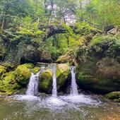 Vous nous manquez ♥️♥️ En attendant on profite des ressources de madame Nature. Petite randonnée au Luxembourg en petite suisse. Dépaysement total à une heure de la maison. Vous connaissez ?  Demain on fêtera quand même la première année du shop autours d'un verre et on espère vous revoir très vite 😘  #conceptstore #outdoor #randonnee #camping #bushcraft #trek #bivouac #ecoresponsable #vanlife #vanlifefrance #promenonsnous #promenonsnous_shop #outdoorlife #voyage #roadtrip #travel #moselletourisme #outtrip #moselle #hiking #ecoresponsable #recycle #location #locationmateriel #metz #metzcentre #metzcentreville #australianshepherd #outtrip #outtrip_official #mullerthal #luxembourg